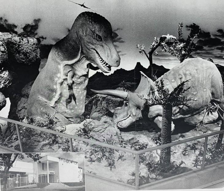 恐竜の国①