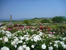 平草原公園