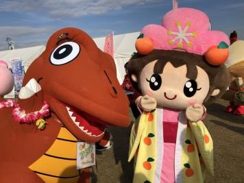 ゆるキャラグランプリ2018 エネゴン あん姫