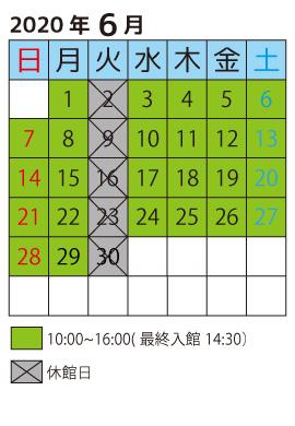 202006営業日カレンダー
